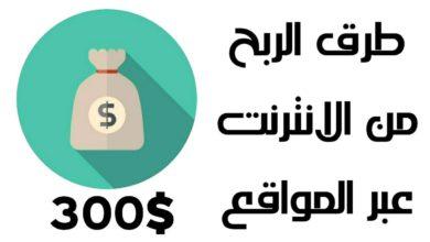 Photo of طريقة الربح من الانترنت واستوفاء شروط جوجل ادسنس على المواقع